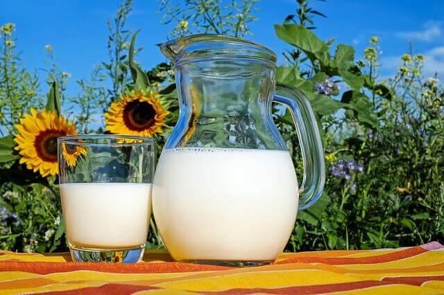 כד חלב מונח על מדף ליד חמניות